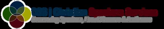 2016-css-logo-rectangle